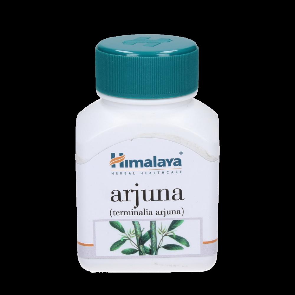 Himalaya - Arjuna
